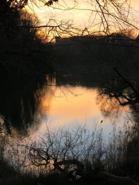 sunset in sky and pond